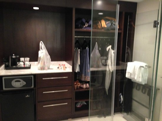 The Condado Plaza Hilton: odd closet/shower/toilet configuration in room (toilet on other side of glass)