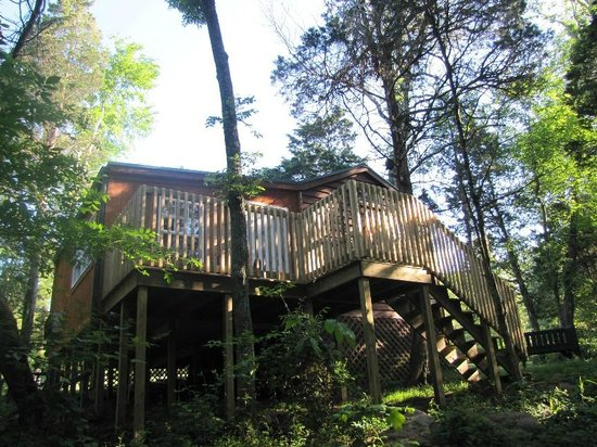 Rim Rock's Dogwood Cabins: Bear's Den back deck