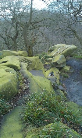 Druids Caves: DRUIDS ROCKS