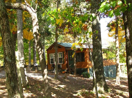 Rim Rock's Dogwood Cabins: Deer Run fall