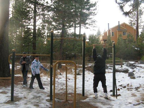 Lake Tahoe Nevada State Park : fitness walk Aspen Grove