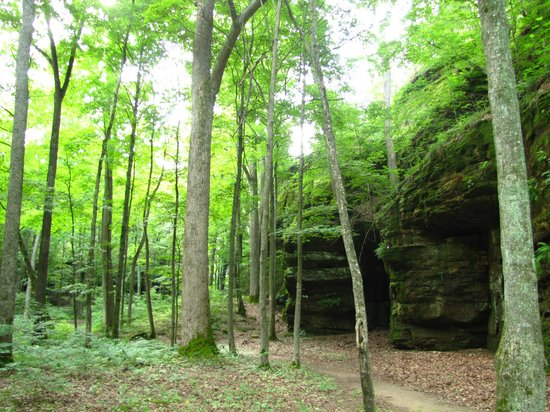 Rim Rock's Dogwood Cabins: Rim Rock hiking trail across the road
