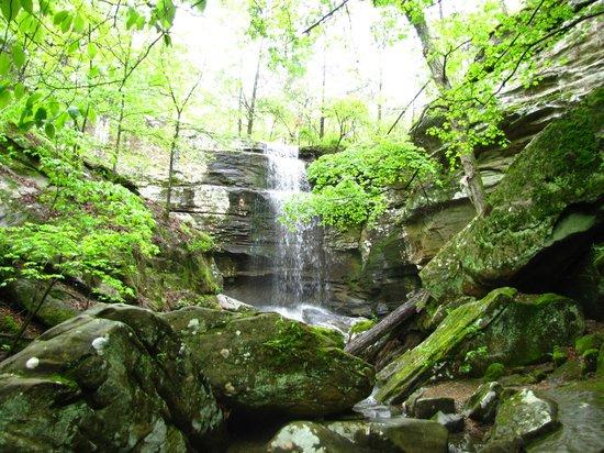 Rim Rock's Dogwood Cabins: Burden Falls nearby