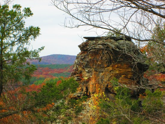 Rim Rock's Dogwood Cabins: Garden of the Gods