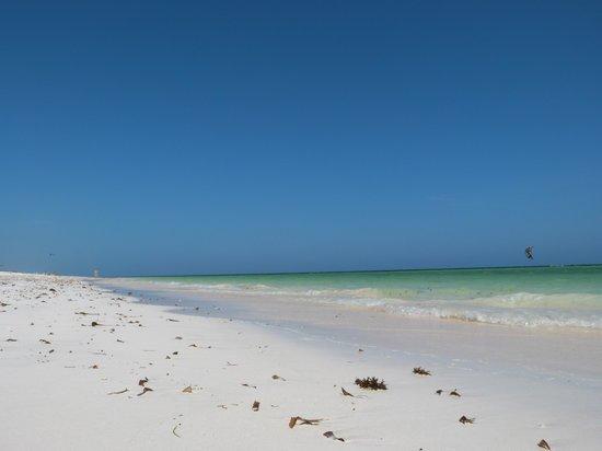 Spiaggia garoda con bassa marea foto di spiaggia delle for Lago tartarughe