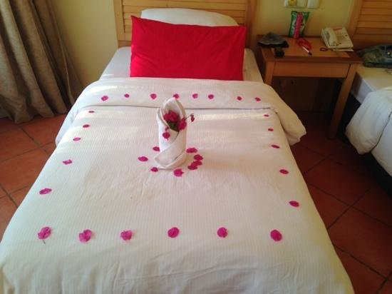 Sharm Dreams Resort : our daughters room