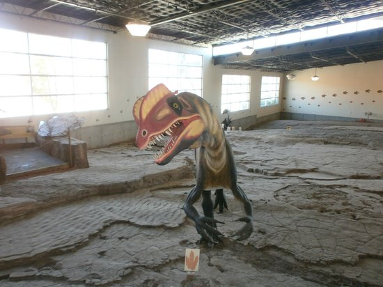 St. George Dinosaur Discovery Site at Johnson Farm: dilophosaurus