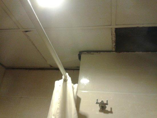 Hotel The Raj : tile missing in bathroom ceiling