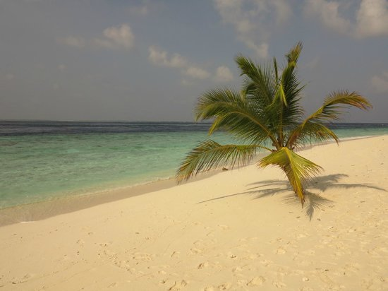 Filitheyo Island Resort: Beach