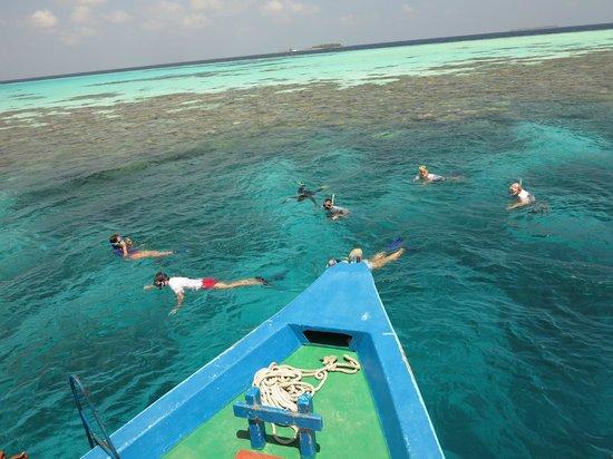 Filitheyo Island Resort : Snorkeling trip