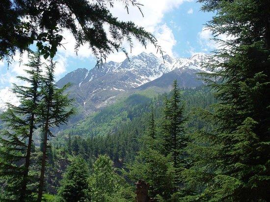 Baikunth Adventure Camp : On Route to Sangla Kanda