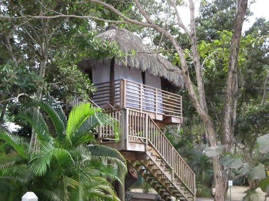 Couples Negril : Tree House - Massages