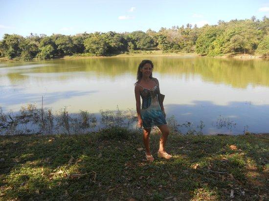 Laguna Big Pond , lindo lugar con una flora y fauna maravillosa, deberían promocionarlo mas