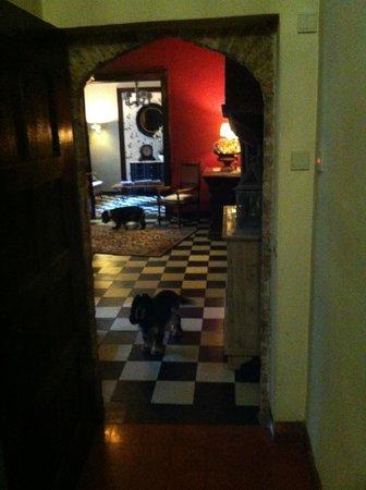 Hotel Egmond : Lobby with pups
