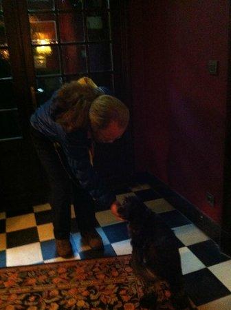 Hotel Egmond: Puppy dog