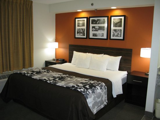 Sleep Inn Nashville Airport : Design to Dream King bedroom
