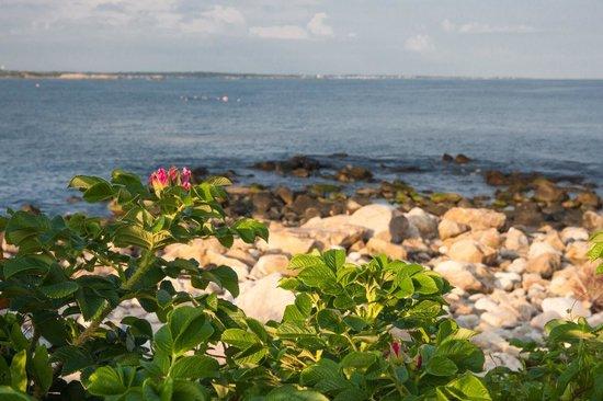 The Break: Gorgeous seaside Narragansett, Rhode Island