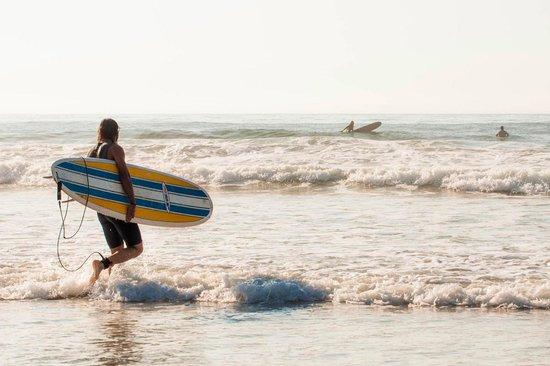 The Break : Surfing Narragansett