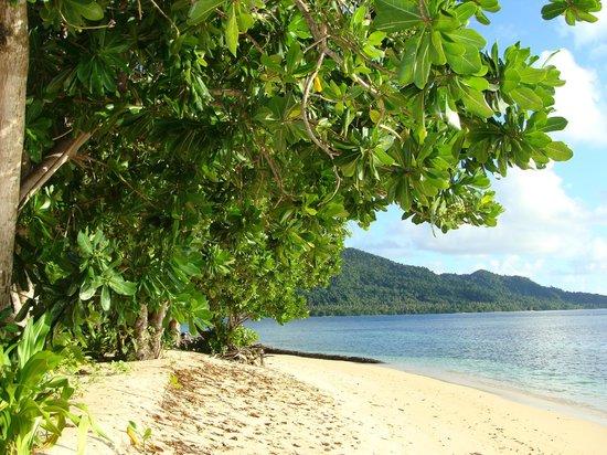 Qamea Resort And Spa Fiji : view from room