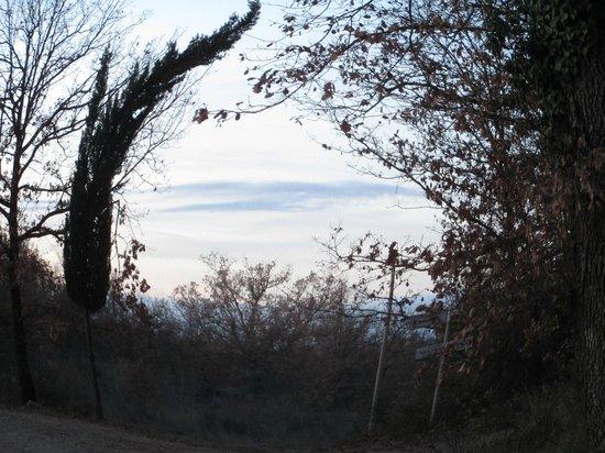 Agriturismo Molinuzzo: Neighborhood