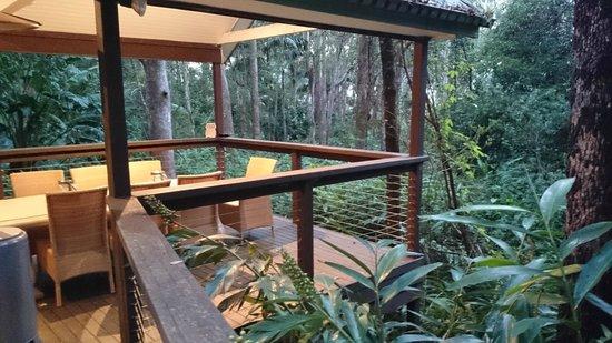 Songbirds Rainforest Retreat: View from bedroom
