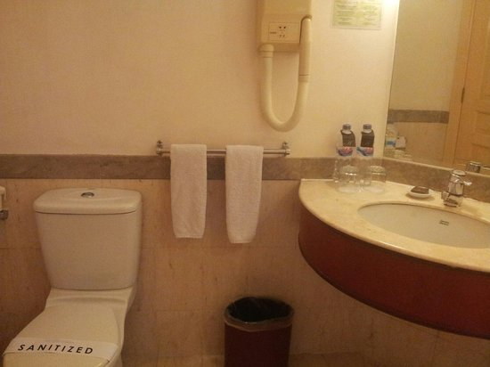 Aryaduta Makassar: Toilet