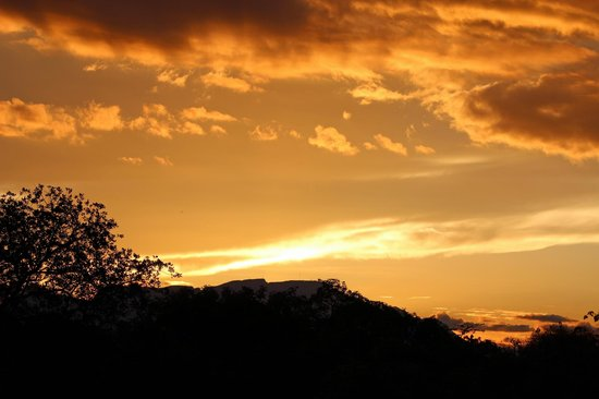 Shumbalala Game Lodge: Thornybush Sunset