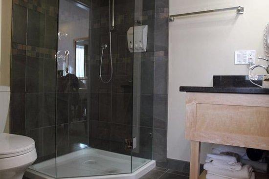 Swiss Chalet Motel : Bathroom in Deluxe Queen Room