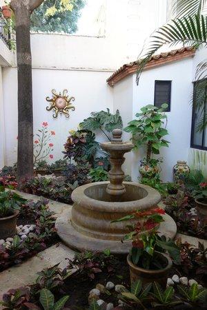 Oaxaca Ollin: Courtyard garden