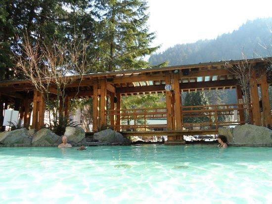 Harrison Hot Springs Resort & Spa: Adults pool