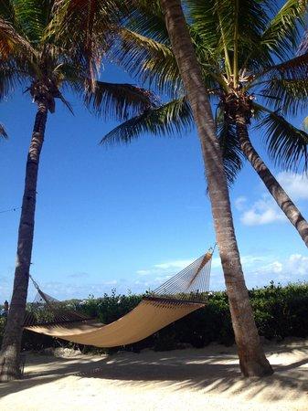 Coconut Palm Inn : Relaxing