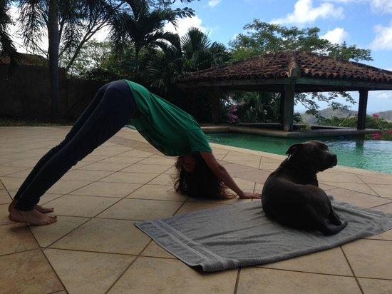 Finca Las Nubes: Downward Dog with Dog
