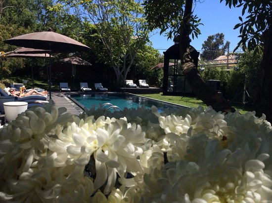 Winery Boutique Hotel : Pool