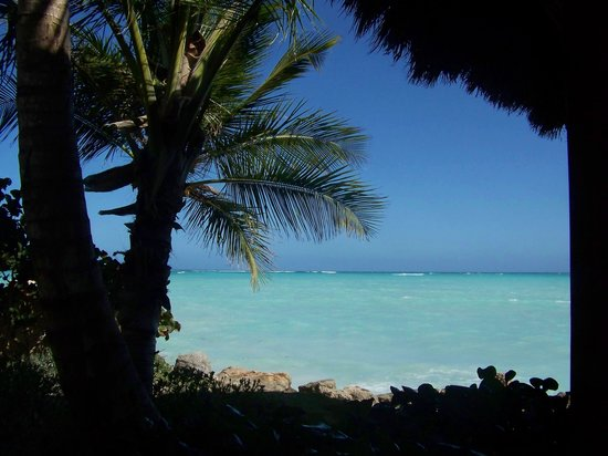 Sanctuary Cap Cana by AlSol: Beautiful views everywhere