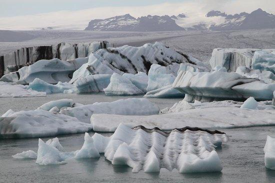 Goecco Indie Tours: Glacial Lagoon Tour