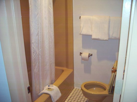 Americas Best Value Inn - St. Albans / South Charleston : Shower/Tub in all rooms
