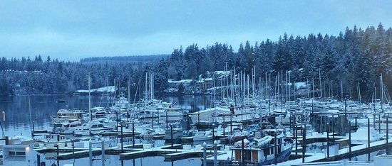 The Resort at Port Ludlow: Marina after it snowed from room 316
