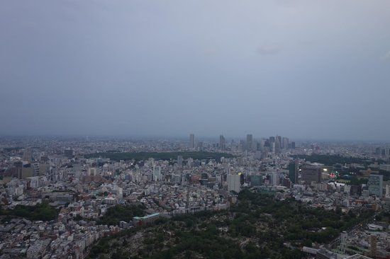 Tokyo City View Observation Deck (Roppongihills) : 東京シティビュー