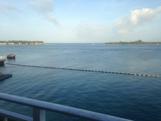 Pier House Resort & Spa : A beautiful view!