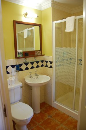 Waterloo House: Large bathroom and shower