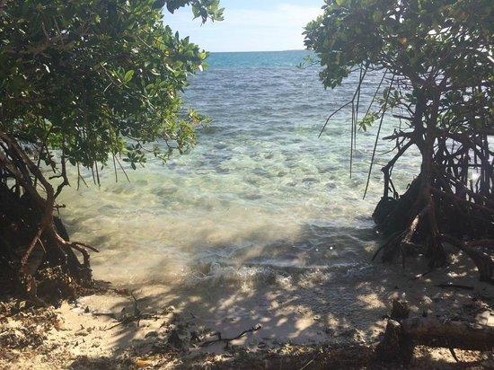 Yok Ha Resort: View