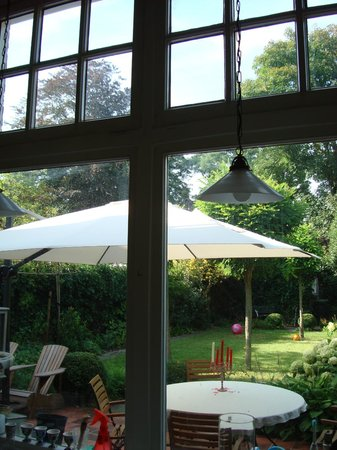 Sycamore: View from the kitchen