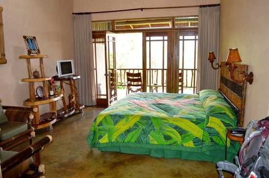 Lost Iguana Resort & Spa: room