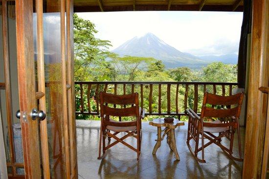Lost Iguana Resort & Spa: view