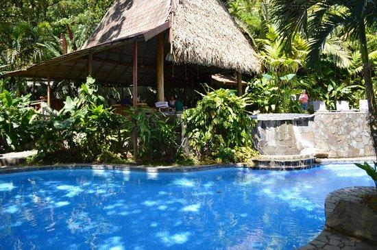 Lost Iguana Resort & Spa: pool
