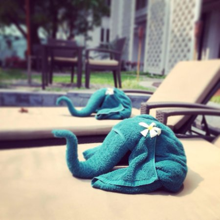 Hua Chang Heritage Hotel : 大象浴巾