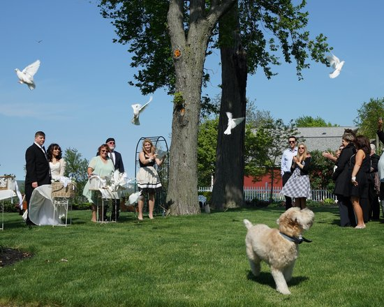 Sheffield Lake, OH: Our Wedding