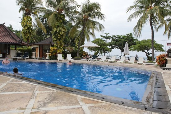 Aneka Lovina Beach Hotel: Swimming Pool