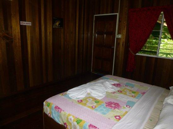 Abai Jungle Lodge : Room
