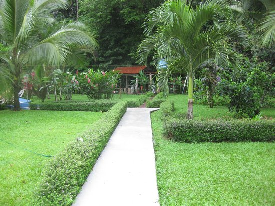 Hotel Lavas del Arenal : The grounds are beautiful; lush and green.
